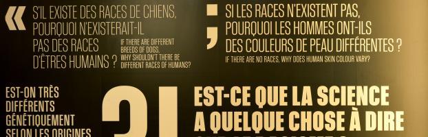 Le racisme en questions